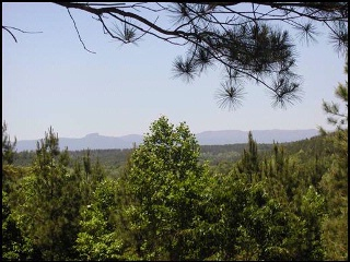View from The Settings Lot 170 for $188,000
